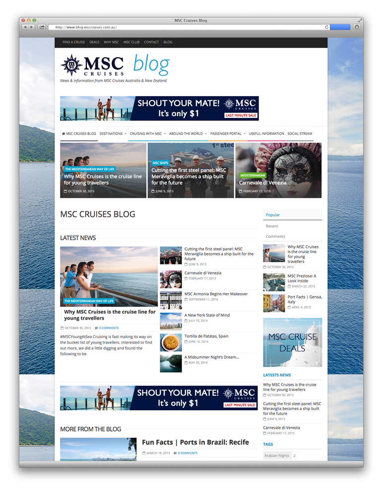 msc_blog-website_layout-example-1